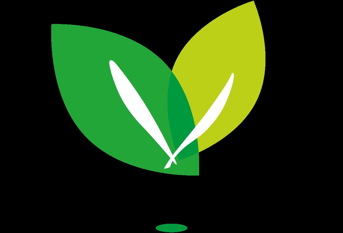Logo Gemeente Valkenswaard SUBSIDIE