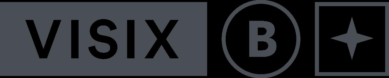 Visix Logo Pms